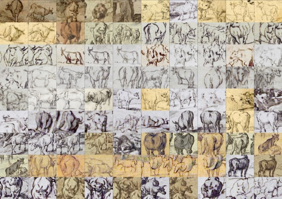 Various cow drawings from the Brueghel corpus